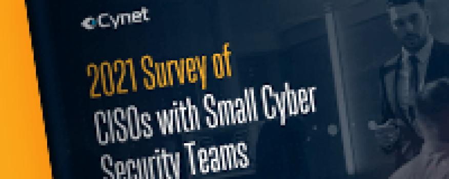 2021 Survey of CISOs with Small Cyber Security Teams