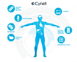 Introducing Cynet Critical Component Whitelisting